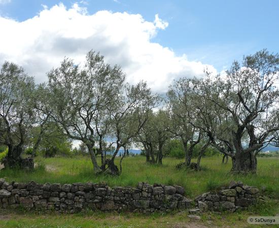 26 /48 - Ballade à Terre & Humanisme, en Ardèche