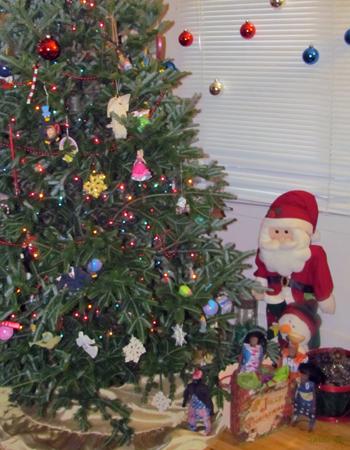 La Famille Ndiaye fête Noël à Indiana aux USA - 13/21