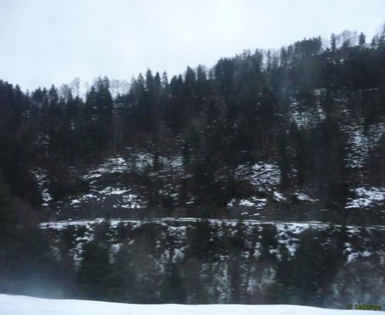 Voyage à bord du MOB (Montreux-Oberland-bernois) - 3/15