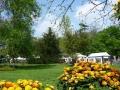 3 /23 Fleurs Jardins et Anaïs