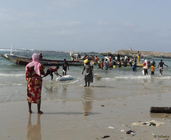 6 /25 - Nettoyage de la plage de Yoff (action)