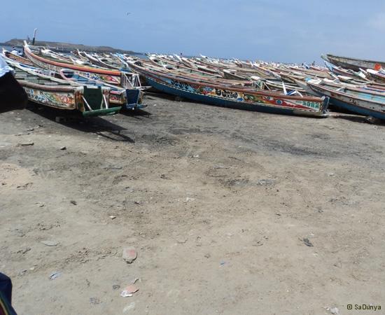 9 /14 - Nettoyage de la plage de Yoff (propre)