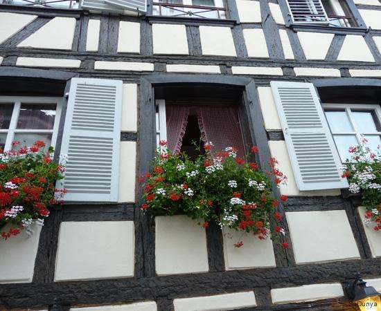 Découverte de la ville de Strasbourg, France - 16/20