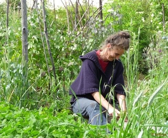2 /23 - Le jardin potager de l\'association Terre & Humanisme