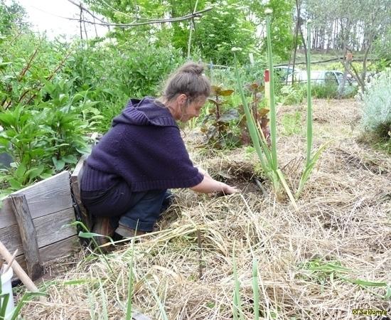 5 /23 - Le jardin potager de l\'association Terre & Humanisme