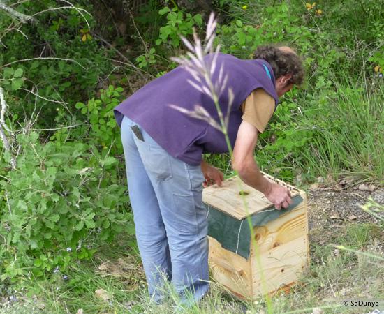 12 /17 - Terre et humanisme, les abeilles essaiment