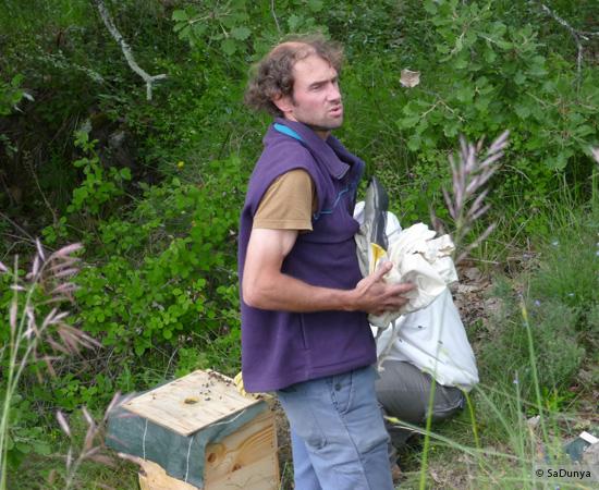 17 /17 - Terre et humanisme, les abeilles essaiment