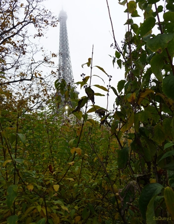 Tour Eiffel, Paris, France - 17/20