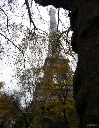 Tour Eiffel, Paris, France - 20/20
