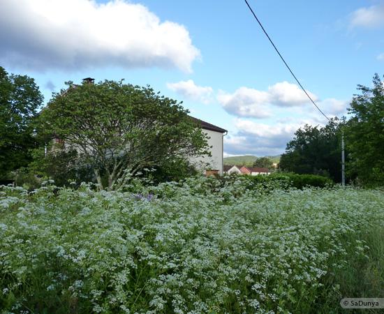 18 /23 - village de Lablachère en Ardèche
