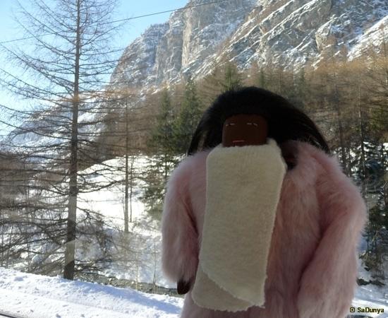 De Martigny à Zermatt à la rencontre du Cervin - 13/33
