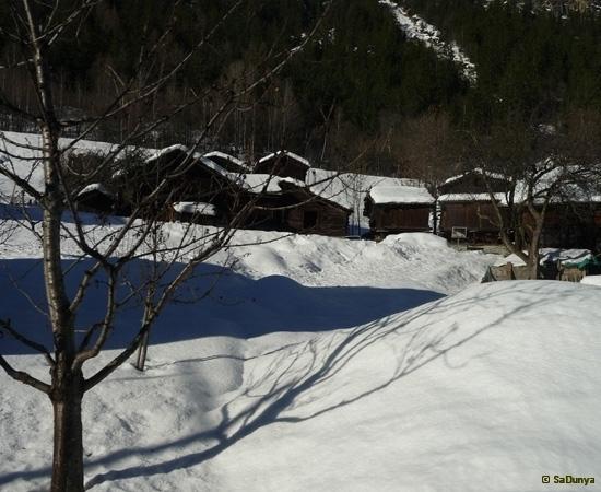 De Martigny à Zermatt à la rencontre du Cervin - 19/33